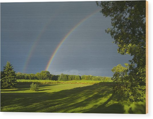 Double Rainbow Over Fields Wood Print