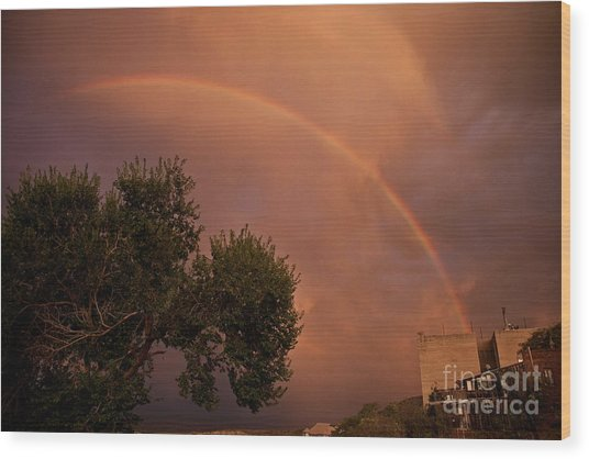 Double Red Rainbow With Tree In Jerome Wood Print