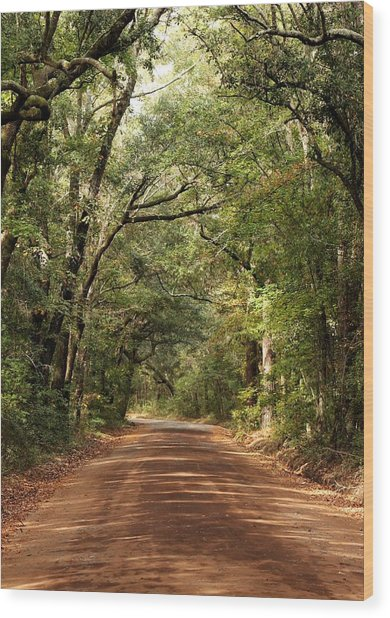 Down The Road A Piece  Wood Print by Kim Thompson