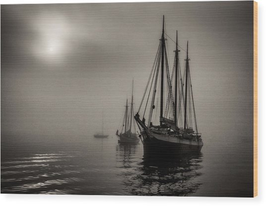 Downeast Fog 1 Wood Print