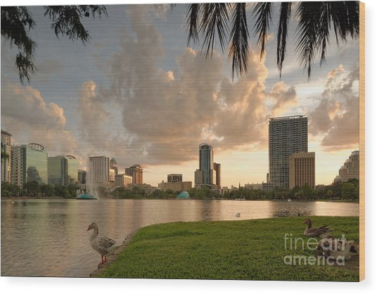 Downtown Orlando Skyline Lake Eola Sunset Wood Print
