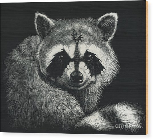 Draccoon Wood Print