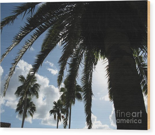 Dramatic Palm Wood Print