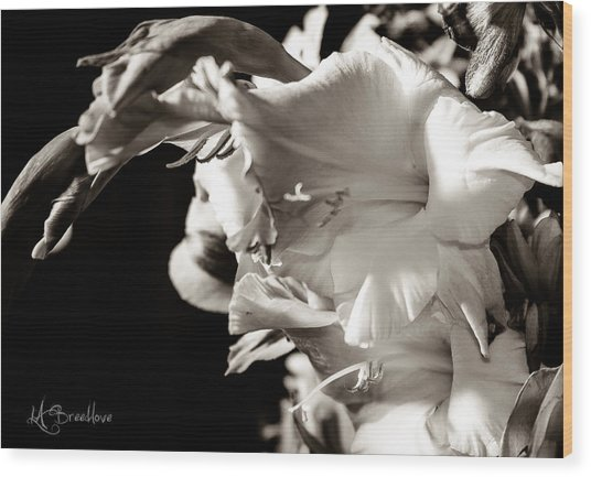 Dramatic Spring Wood Print by Lori Breedlove