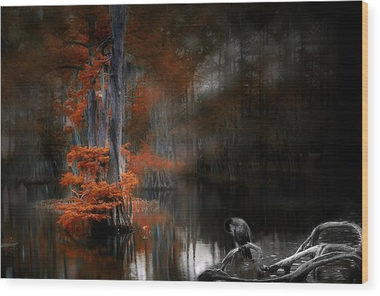 Dramaticlake2 Wood Print by Cecil Fuselier