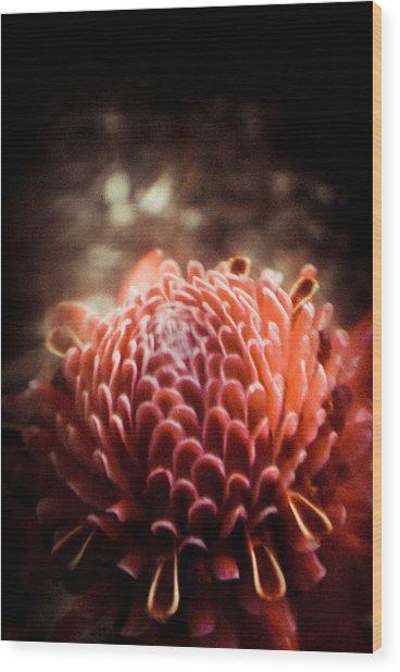 Dream In Bloom - Orange  Wood Print