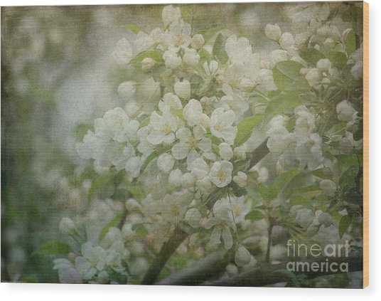 Dream Of Spring Wood Print