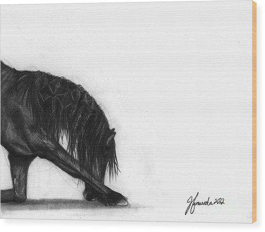 Dreamer Wood Print by J Ferwerda