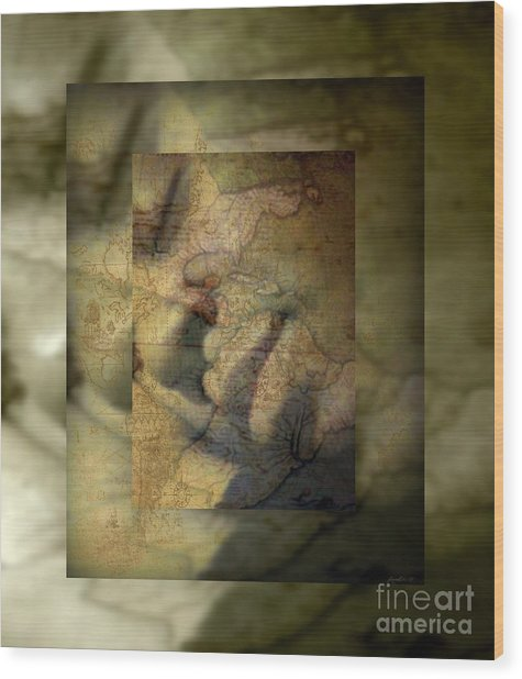 Dreaming Of What Could Be Isn't Meant To Be Wood Print by Fania Simon