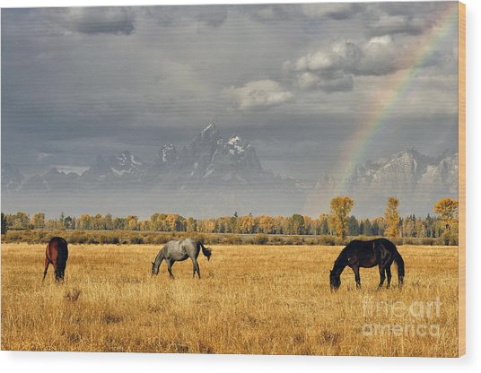 Dreams At The End Of The Rainbow Wood Print by Deby Dixon