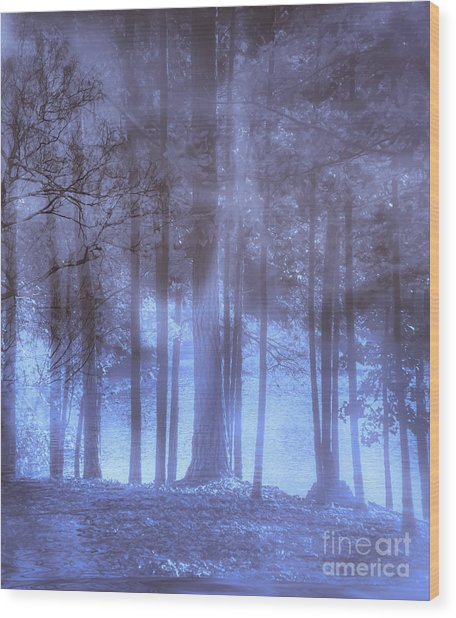Dreamy Forest Wood Print