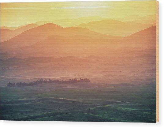 Dreamy Morning Wood Print