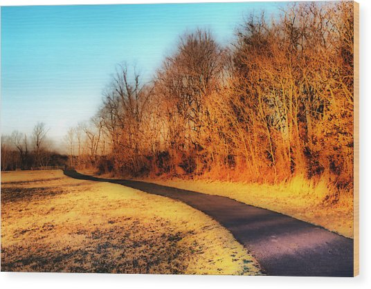 Dreamy Pathway Wood Print by Thomas  MacPherson Jr