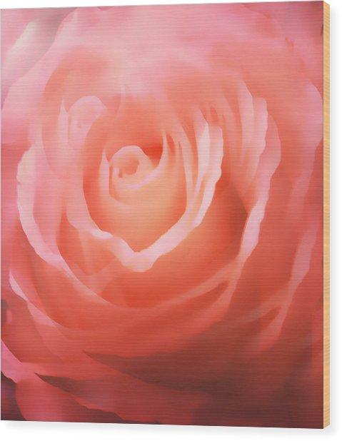 Dreamy Pink Rose Wood Print