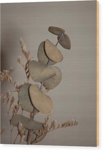 Dried Flowers Wood Print