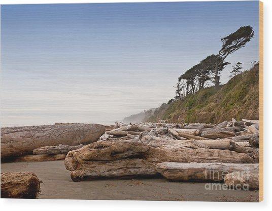 Drift Logs Tossed Like Pick-up Sticks Upon Pacific Coast Beach Wood Print