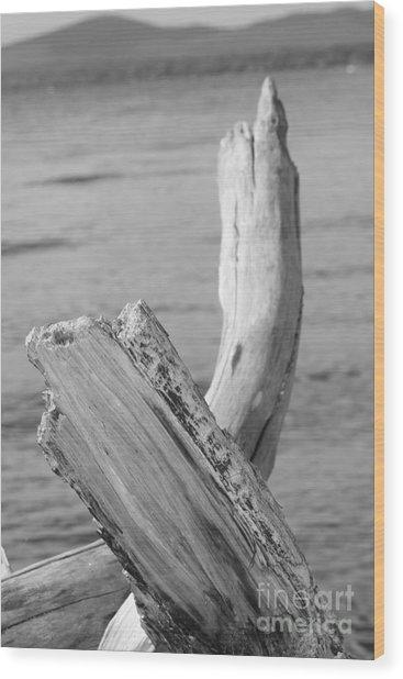Driftwood 2 Wood Print