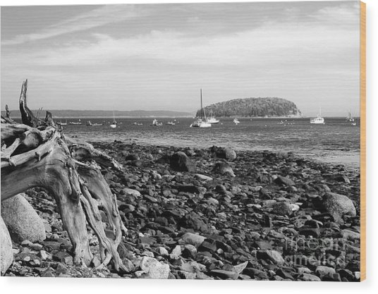 Driftwood And Harbor Wood Print