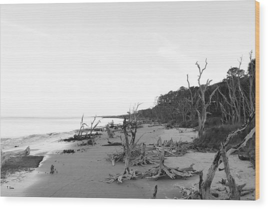 Driftwood Beach Wood Print by Thomas Leon