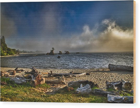 Driftwood Beach Wood Print