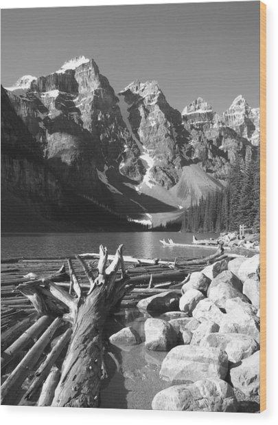 Driftwood - Black And White Wood Print