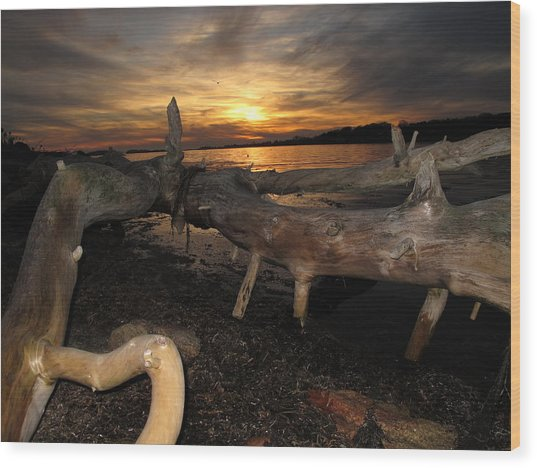 Driftwood Sunset Wood Print