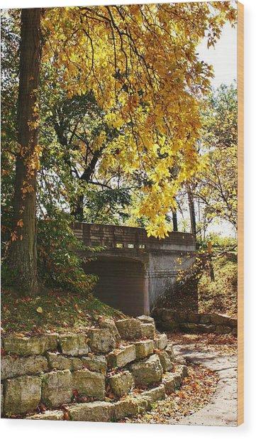Drive Through Sinnissippi Park Wood Print