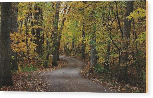 Drive Through The Woods Wood Print