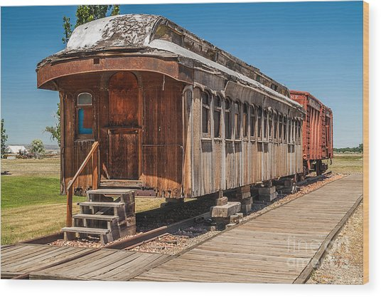 Drover And Cattle Cars Wood Print
