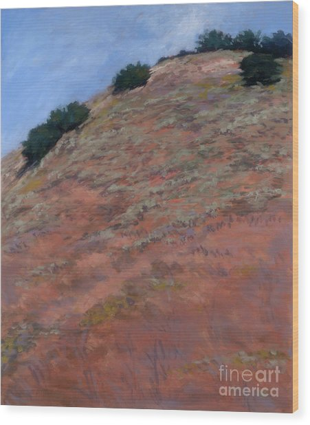 Drum Canyon - Late Spring-  1 Wood Print