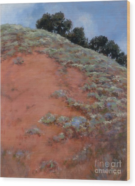 Drum Canyon - Late Spring-  2 Wood Print