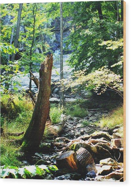 Dry Creek Wood Print