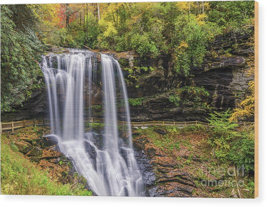 Dry Falls In Fall Wood Print