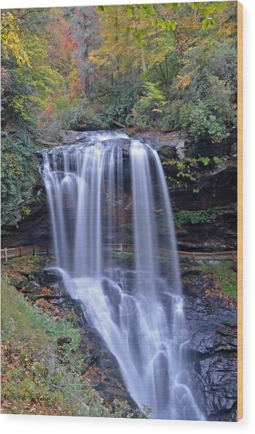 Dry Falls In Highlands North Carolina Wood Print by Mary Anne Baker