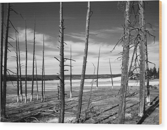 Dry Lake Bed Wood Print