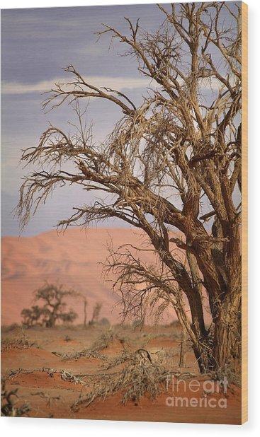 Dry Tree In The Desert Wood Print