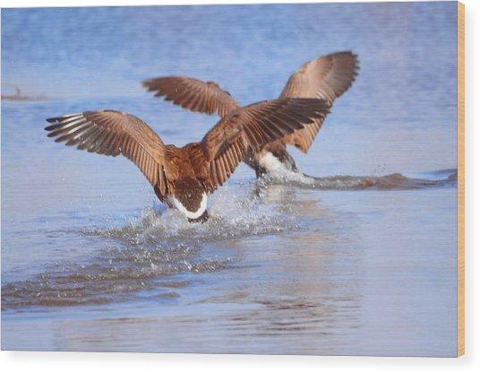 Dual Landing Wood Print by Valarie Davis
