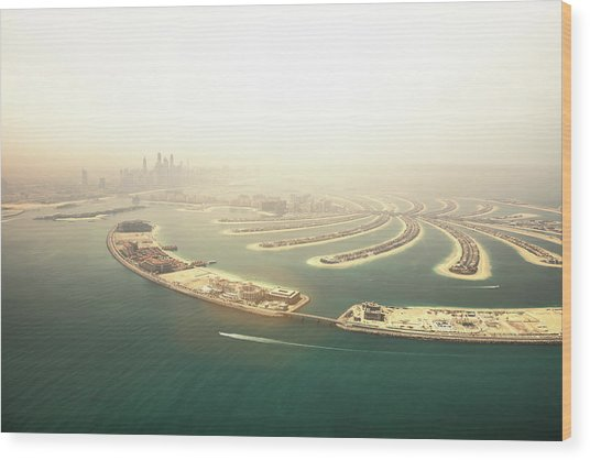 Dubai Marina Skyscrapers And The Palm Wood Print by Leopatrizi