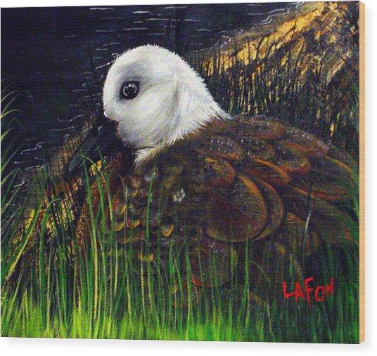 Duck At Dusk Wood Print