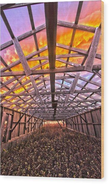 Duck Farm Skeleton Skylight Wood Print