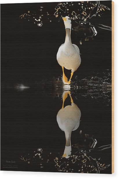 Duck On Stage Wood Print