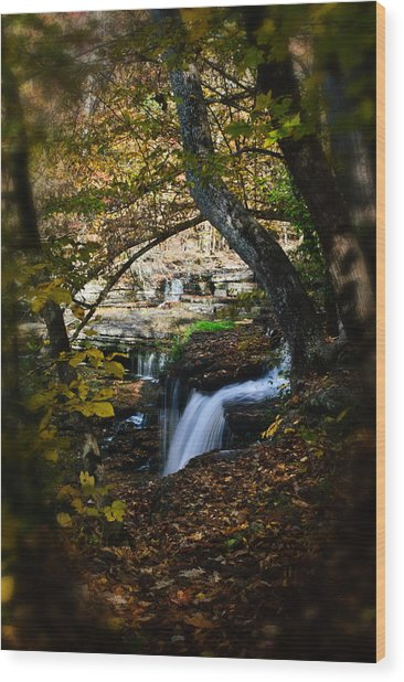 Duck River Falls Wood Print