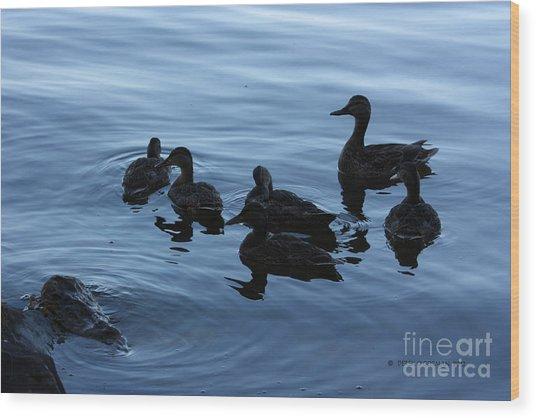 Ducks At Dusk Wood Print