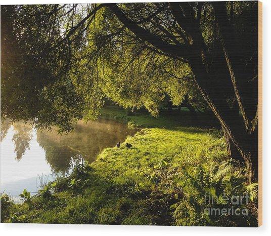 Ducks Of The Dawn Wood Print