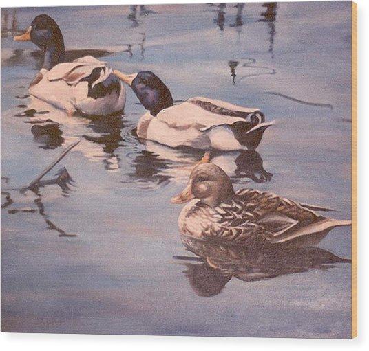 Ducks On The Cachuma Wood Print
