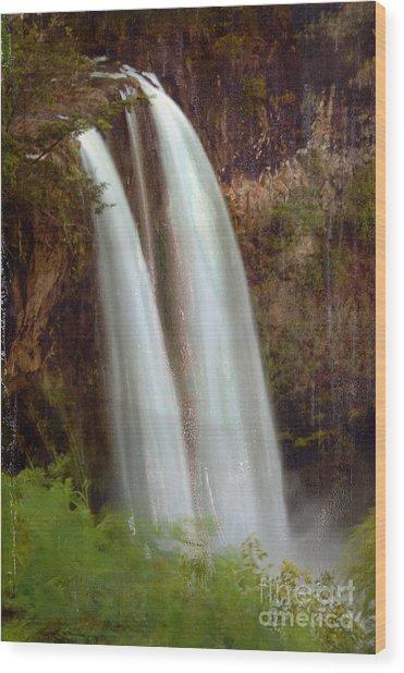 Duel Falls Wood Print