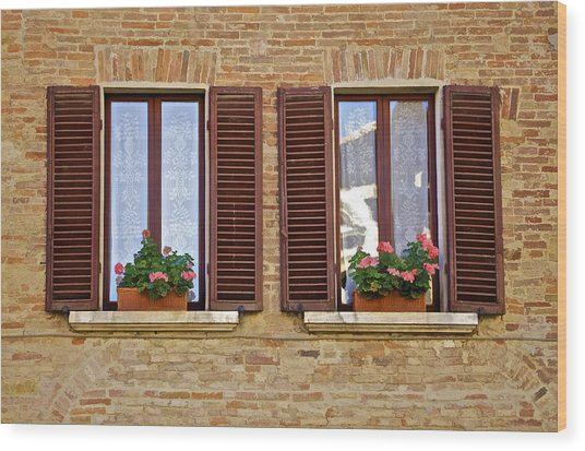 Dueling Windows Of Tuscany Wood Print