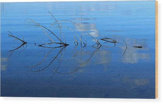 Duet Of The Branch And The Lake Wood Print