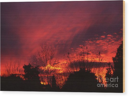 Wood Print featuring the photograph Dundee Sunset by Jeremy Hayden