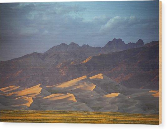 Dune Delight Wood Print